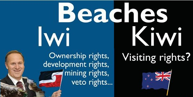 Cartoon Beaches Iwi Kiwi