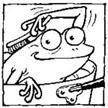 frog1_scrub